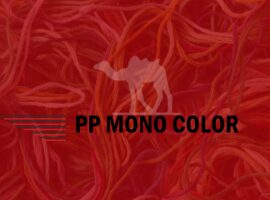 PP MONO COLOR