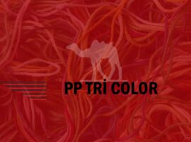 PP TRİ COLOR